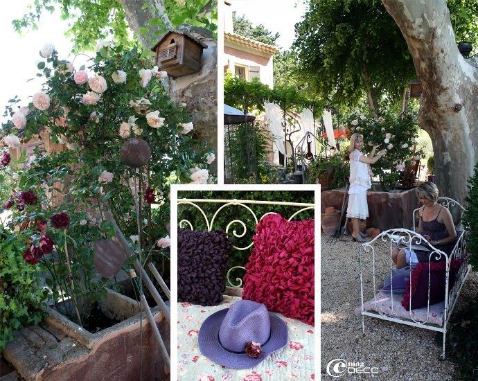 Devant le vieux mas provençal, les rosiers et vieux platane