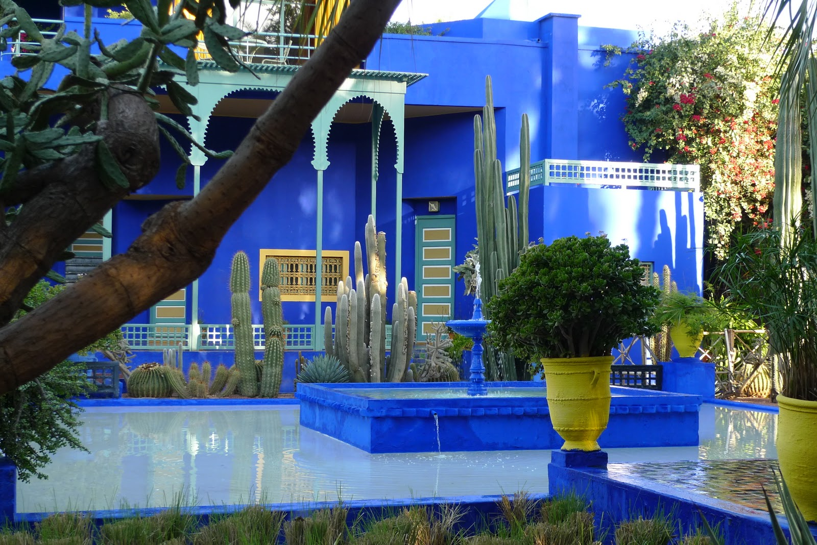 jeffrey bale 39 s world of gardens jardin majorelle marrakesh morocco. Black Bedroom Furniture Sets. Home Design Ideas