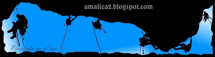 amalica2