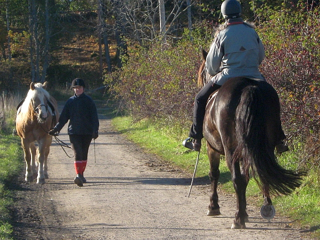 two horses and riders greeting each other on a country path