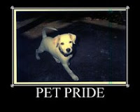 Pet Pride