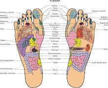 El mapa de los pies