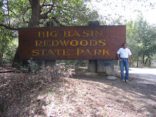 Entrance of the RedWoods State Park