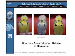 Schweizer Schauwellensittiche