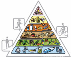 Swiss food pyramid
