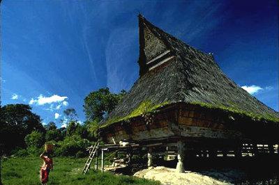 rumah adat karo