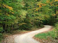 Roads Paths Tracks HD Desktop Wallpapers
