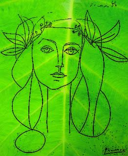 Picasso Francoise Gilot sketch