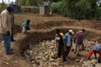 Mt. Kenya Reforestation Project