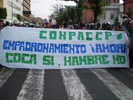 MARCHA CONTRA BUSH Y SU POLITICA