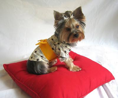 Yorkie Dog Clothes Uk