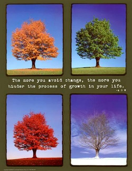 Seasons Of Life Quotes Awesome Joyful Insights Change Of Seasons.in All Areas Of Life.