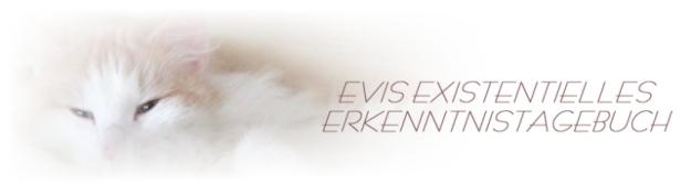 Evis existentielles Erkenntnistagebuch