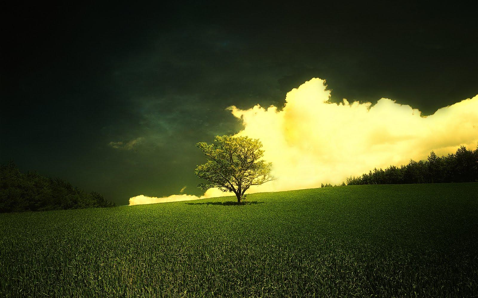http://4.bp.blogspot.com/_Kpi0thIqeJI/TMGvHrbmOuI/AAAAAAAAAJ4/H_i4gk6X_lI/s1600/httpfreehd.blogspot+(10).jpg
