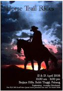 Horse Trail Rides Poster