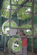 vertical farmer