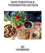 Raw Christmas & Thanksgiving Recipes ebook!