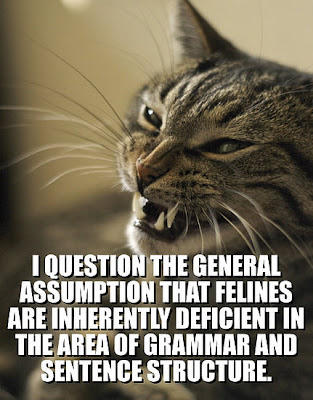 http://4.bp.blogspot.com/_KuaAihD4oVk/SbG0j55d6RI/AAAAAAAAHmw/Ish0DqnQVK4/s400/kitty+grammar.jpg
