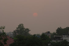 Dust in Delhi - View from the roof top of the residence