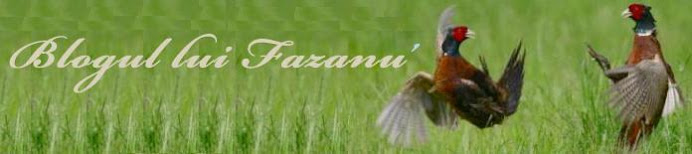 Blogul lui Fazanu'