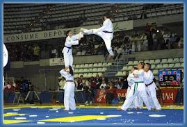 Taekwondo Corner