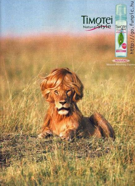Creative advertising - Timotei natural style