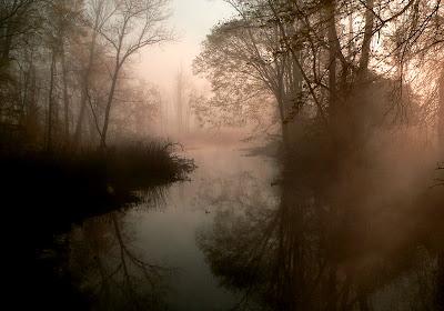http://4.bp.blogspot.com/_Kvq7GWQ-IrY/R7tLWywDU3I/AAAAAAAAAL0/B7qN1QATVGY/s400/swamp.jpg