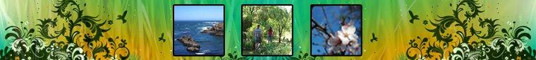 Portugal Algarve | passeios pedestres turismo natureza incentivos eventos