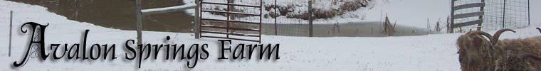 Avalon Springs Farm