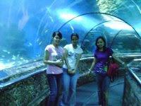 di bawah laut :p