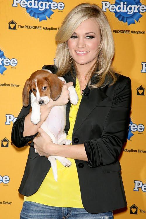 Ellen Degeneres Dog Food Commercial