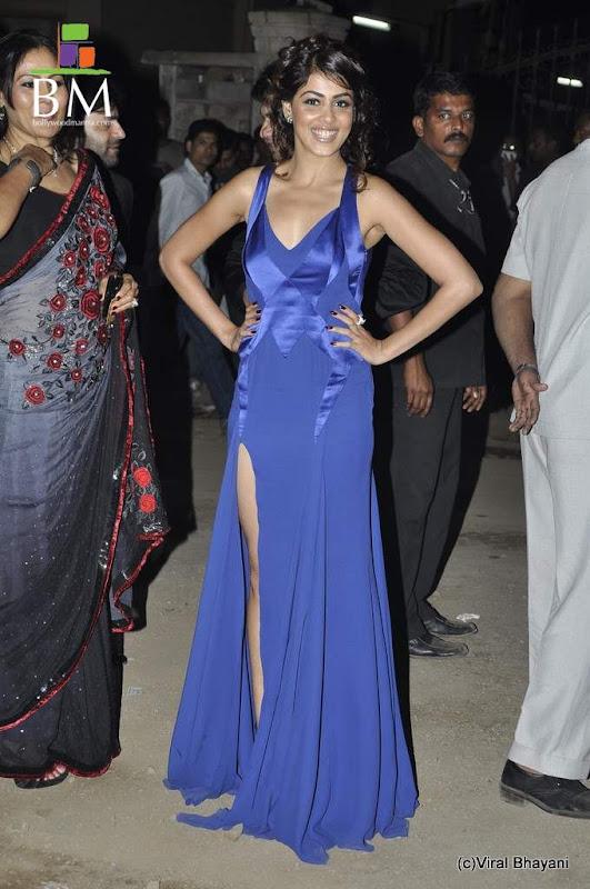 Photos Genelia at th Idea Filmfare Awards photos wallpapers