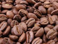 café, caféier