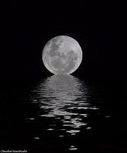 la luna llena nos hace cantar