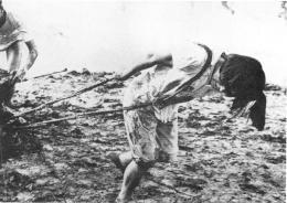 Genocídio para forçar a industrialização e o triunfo da revolução mundial