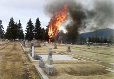 Avião que levava família do maior empresário do aborto cai e pega fogo