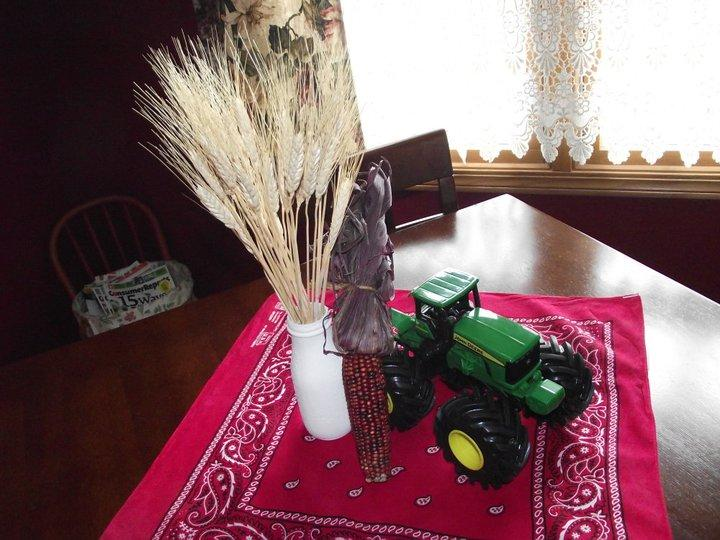 Kids Parties: Farm/Barnyard Party Ideas - Design Dazzle