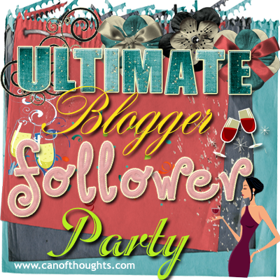 Ultimate Blogger Follower Party