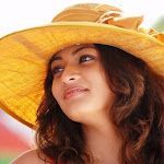 Sneha Ullal   I Will Never Kiss On Screen