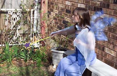 Annieinaustin, Garden fairy