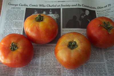 Annieinaustin, tomatoes & Carlin