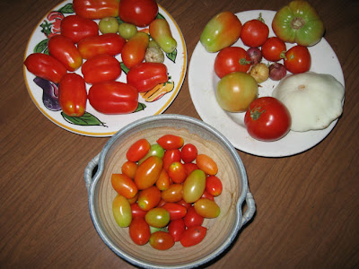 Annieinaustin, tomatoes on counter
