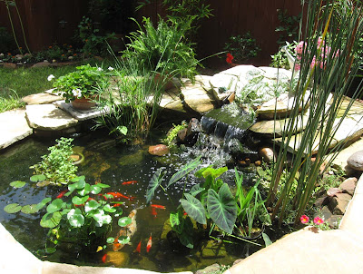 Annieinaustin, colorful pond 5