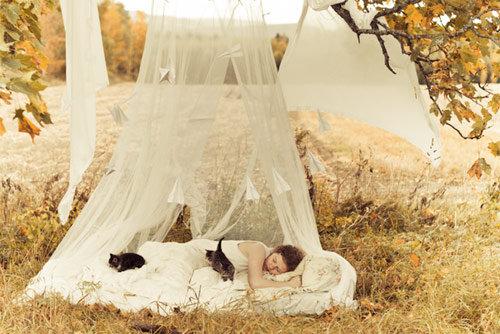 [sleeping+beauty]