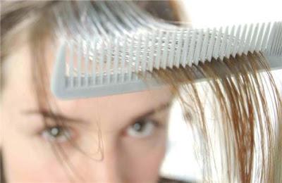 cabello capilar   calvicie   crecimiento del pelo  Pelo Mujeres