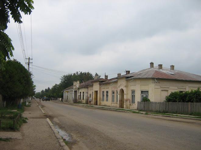 Strada principală din Ştefăneşti / BT