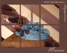 Mis Musass