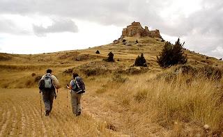 Camino del castillo de Gormaz