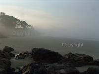 beach landscape misty new england coast massachusetts