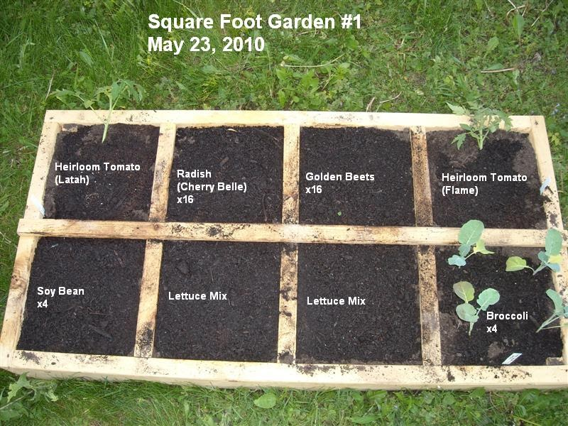 A single step square foot gardening for Four foot garden blueprint